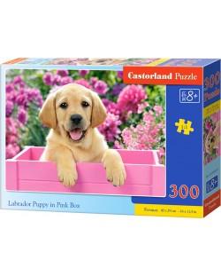 Puzzle Castorland de 300 piese - Labrador mic intr-o cutie roz