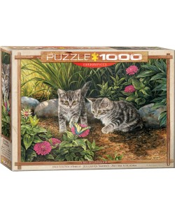Puzzle Eurographics de 1000 piese – Pisoiasi