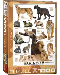 Puzzle Eurographics de 1000 piese – Pisici mari