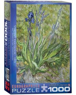 Puzzle Eurographics de 1000 piese – Stanjenel, Vincent van Gogh