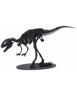 Puzzle 3D Kikkerland - Dinozaur, sortiment
