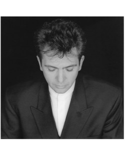 Peter Gabriel - Shaking The Tree - 16 Golden Greats (CD)