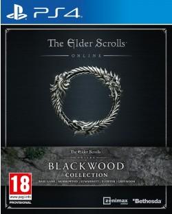 The Elder Scrolls Online Blackwood Collection (PS4)