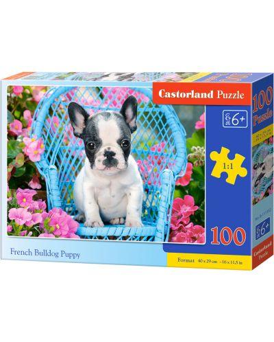 Puzzle Castorland de 100 piese - Catel Bulldog francez - 1