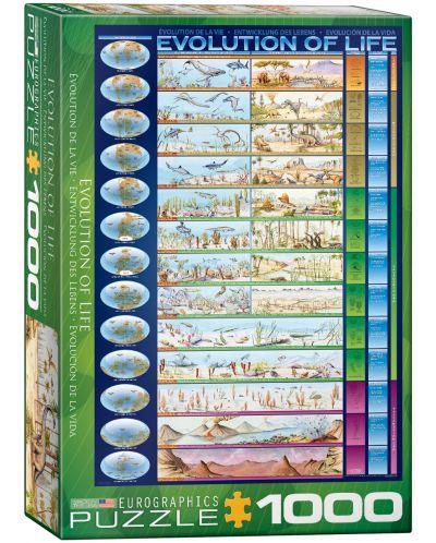 Puzzle Eurographics de 1000 piese – Evolutia vietii - 1