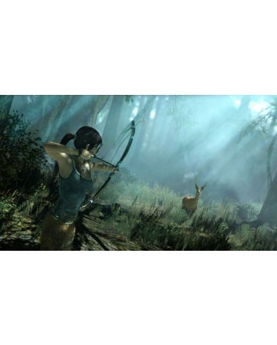 Tomb Raider (PC) - 6