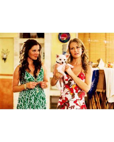 Beverly Hills Chihuahua (DVD) - 6