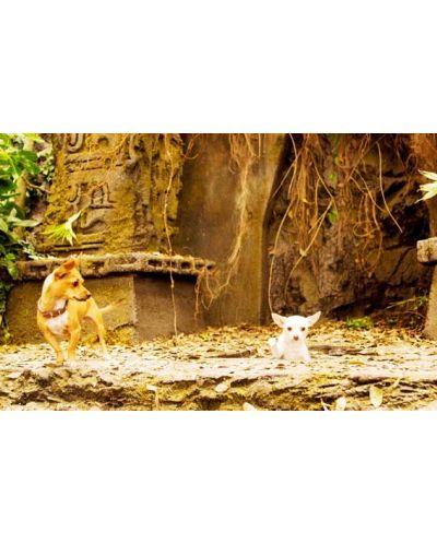 Beverly Hills Chihuahua (DVD) - 5