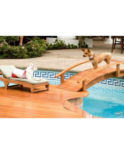 Beverly Hills Chihuahua (DVD) - 3