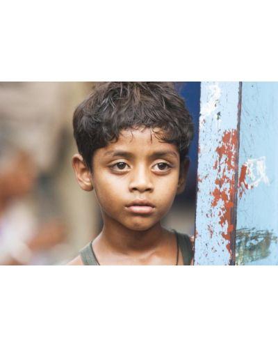 Slumdog Millionaire (DVD) - 2