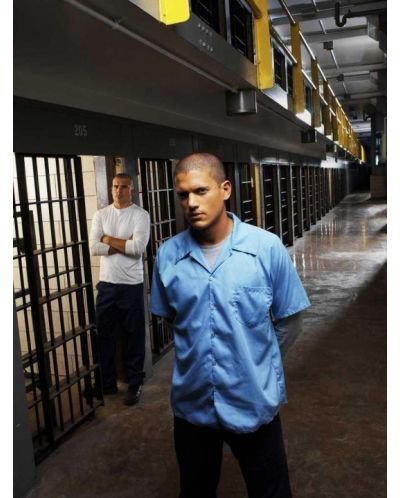 Prison Break (DVD) - 8