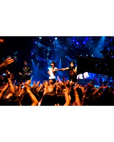Jonas Brothers: The 3D Concert Experience (DVD) - 2