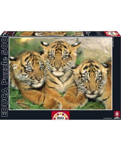 Puzzle Educa de 500 piese - Tigrii - 1