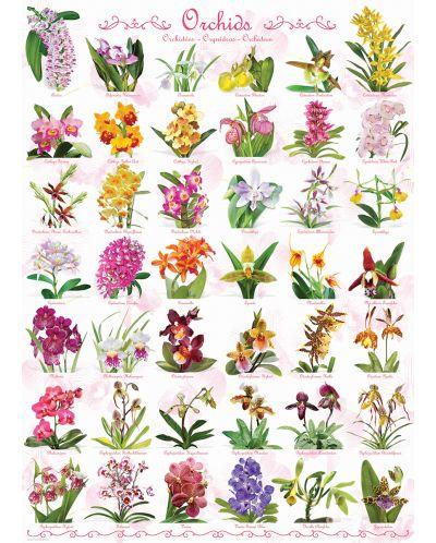 Puzzle Eurographics de 1000 piese – Orhidee - 2