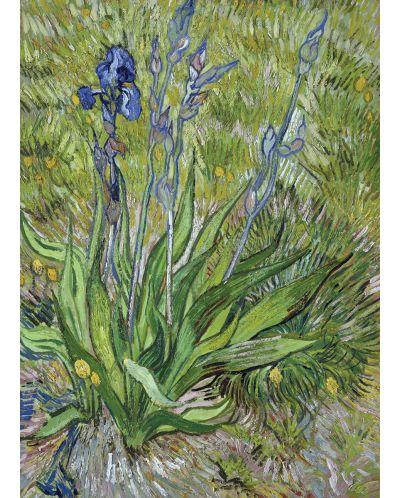 Puzzle Eurographics de 1000 piese – Stanjenel, Vincent van Gogh - 2