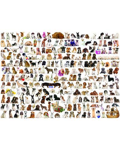 Puzzle Eurographics de 1000 piese – Lumea cateilor - 2