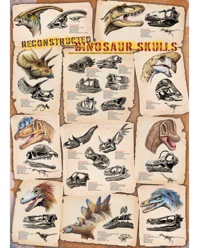 Puzzle Eurographics de 1000 piese – Cranii de dinozauri - 2