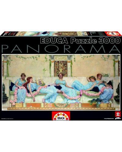 Puzzle panoramic Educa de 3000 piese - Scena dramatica, William Reynolds-Stephens - 1