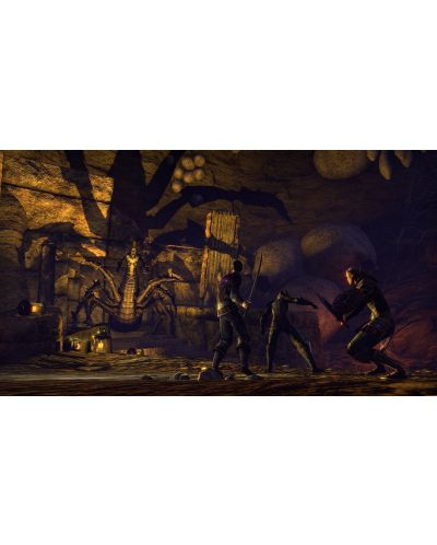 The Elder Scrolls Online Blackwood Collection (PS4) - 8