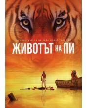 Life of Pi (DVD)