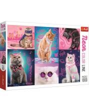 Puzzle Trefl de 1000 piese - Super pisici