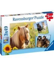 Puzzle Ravensburger de 3 x 49 piese - Cai frumosi