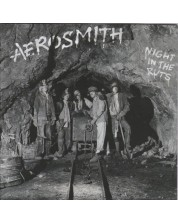 AEROSMITH - Night in the Ruts (CD)
