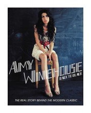 Amy Winehouse - Back to Black (DVD)