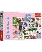 Puzzle Trefl de 60 piese - Lumea pisicilor