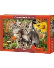 Puzzle Castorland de 1500 piese - Kitten Buddies
