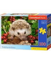 Puzzle Castorland de 100 piese - Arici cu fructe de padure