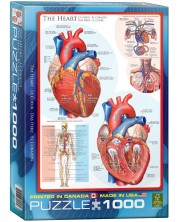 Puzzle Eurographics de 1000 piese – Corpul uman, Inima -1