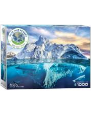 Puzzle Eurographics cu 1000 de piese - Arctica -1