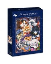 Puzzle Bluebird de 1000 piese - Pisoiasi in dulap