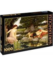 Puzzle D-Toys de 1000 piese – Ecou si Narcis, John William Waterhouse