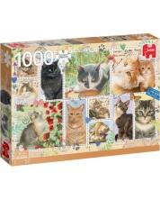 Puzzle Jumbo de 1000 piese - Marci postale cu pisici