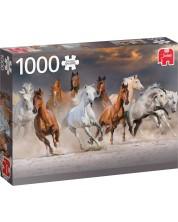 Puzzle Jumbo de 1000 piese - Desert Horses