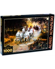 Puzzle D-Toys die 1000 piese - Galon, Alfred Kowalski