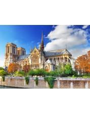Puzzle Bluebird de 1000 piese - Cathédrale Notre-Dame de Paris, Brian Keaney