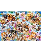 Puzzle Bluebird de 1000 piese -Selfie Pet Collage, Howard Robinson