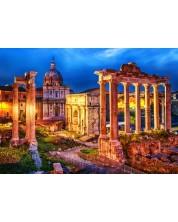Puzzle Bluebird de 1000 piese - Roman Forum