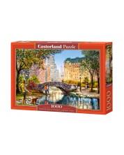 Puzzle Castorland de 1000 piese - Plimbare de seara in Cental Park, Richard Macneil