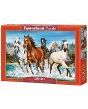 Puzzle Castorland de 2000 piese - Chemarea naturii