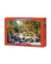 Puzzle Castorland de 2000 piese - Padure
