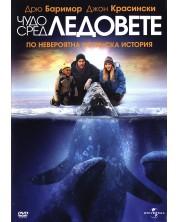 Big Miracle (DVD)