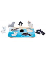 Puzzle din lemn Hape - Atinge si recunoaste, animale polare -1