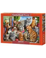 Puzzle Castorland de 2000 piese - Casa pisicilor, Marcelo Corti