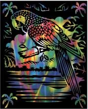 Set gravura Reeves - Papagal, pe baza colorata