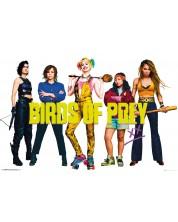 Poster maxi GB eye - Birds of Prey: All Birds