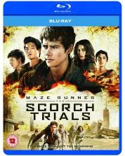 Maze Runner: The Scorch Trials (Blu-ray)